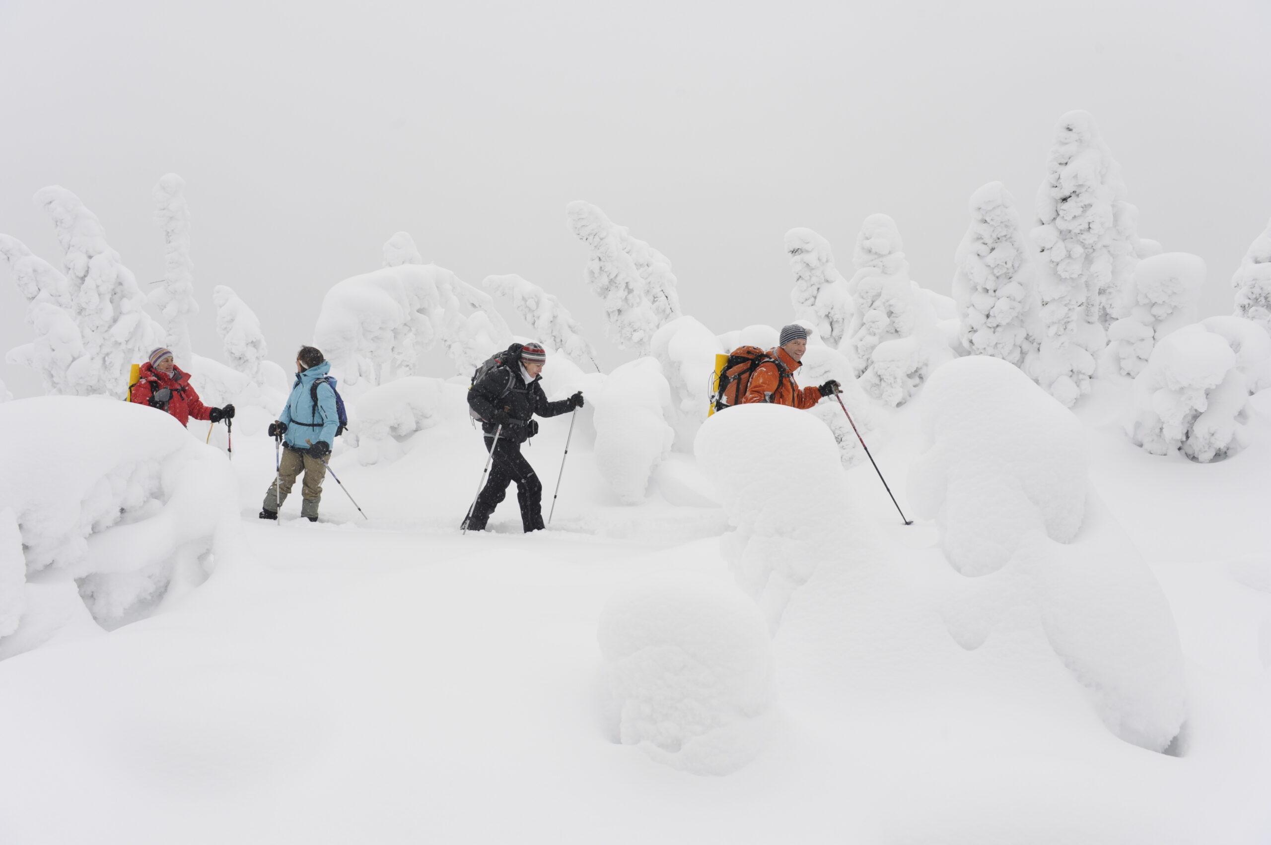 Winter Sports in Canada - Gaspésie National Park